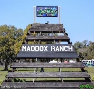 maddox ranch