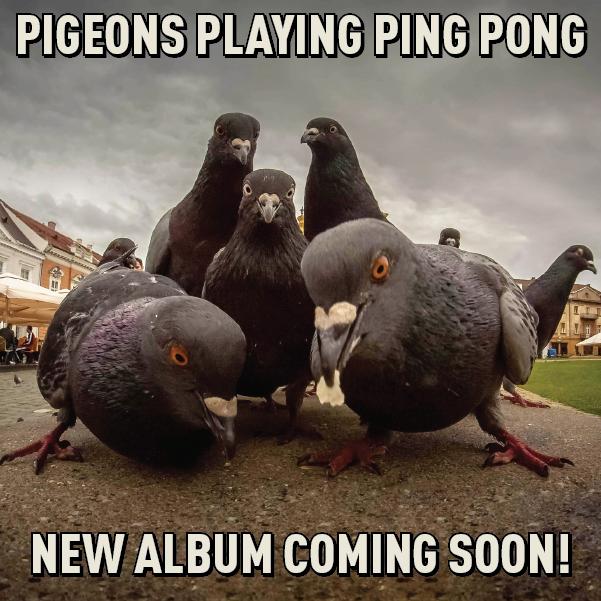 pppp new album